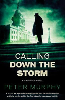 Calling Down The Storm av Peter Murphy (Heftet)