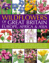 Wildflowers of Great Britain, Europe, Africa and Asia av Michael Lavelle (Heftet)