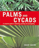 Omslag - Palms and Cycads