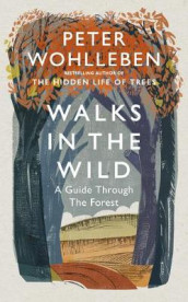 Walks in the Wild av Peter Wohlleben (Innbundet)