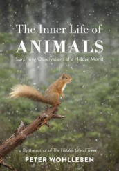 Inner life of animals - surprising observations of a hidden world av Peter Wohlleben (Heftet)
