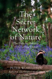 The Secret Network of Nature av Peter Wohlleben (Innbundet)