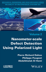 Omslag - Nanometer-Scale Defect Detection Using Polarized Light