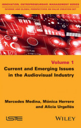 Omslag - Current and Emerging Issues in the Audiovisual Industry