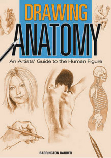 Drawing anatomy av Barrington Barber (Heftet)
