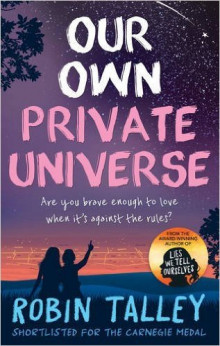 Our Own Private Universe av Robin Talley (Heftet)