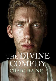 The Divine Comedy av Craig Raine (Innbundet)