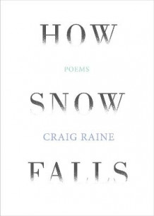 How Snow Falls av Craig Raine (Innbundet)