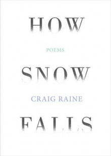 How Snow Falls av Craig Raine (Heftet)