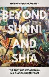 Omslag - Beyond Sunni and Shia