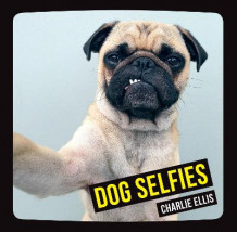 Dog selfies av Charlie Ellis (Innbundet)