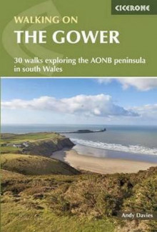 Walking on the Gower av Andrew Davies (Heftet)