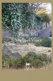 Plain Text av Vince Michael (Heftet)
