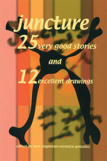 25 Very Good Stories and 12 Excellent Drawings (Heftet)