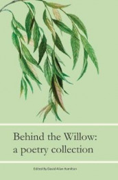 Beyond The Willow av Raymond Audet, Rhiannon Cobb og Pearl Williams (Heftet)