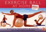 Omslag - Exercise ball at home