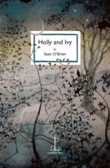 Holly and Ivy av Sean O'Brien (Heftet)