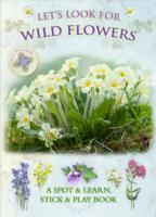 Let's Look for Wild Flowers av Caz Buckingham og Andrea Pinnington (Heftet)