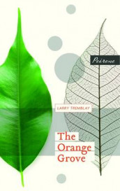 The Orange Grove av Larry Tremblay (Heftet)