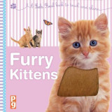 Omslag - Furry Kittens