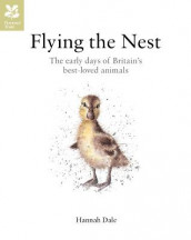 Flying the Nest av Hannah Dale (Innbundet)