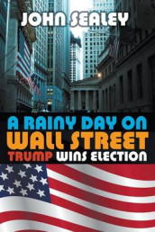 A Rainy Day on Wall Street av John Sealey (Heftet)