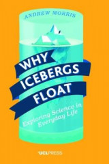Omslag - Why Icebergs Float