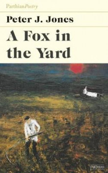 Fox in the Yard av Peter J. Jones (Heftet)