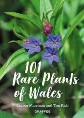 101 Rare Plants of Wales av Lauren Marrinan og Tim Rich (Innbundet)