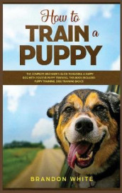 How to Train a Puppy av Brandon White (Innbundet)