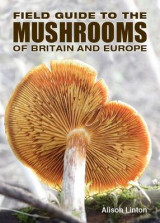 Omslag - Field Guide to Mushrooms of Britain and Europe