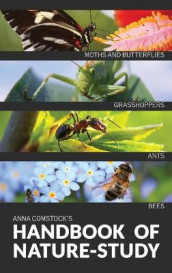 The Handbook Of Nature Study in Color - Insects av Anna B Comstock (Innbundet)