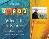Birds: What's In A Name? av Peter Barry (Innbundet)