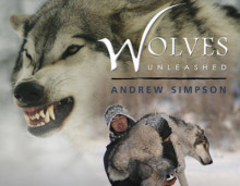 Wolves Unleashed av Andrew Simpson (Innbundet)