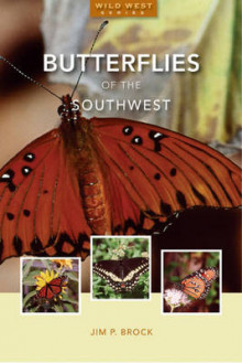 Butterflies of the Southwest av Jim P Brock (Heftet)