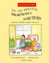 Gabe and the Park & His Big Toy Box (Mandarin Chinese) av Rochelle O'Neal Thorpe (Heftet)