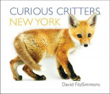 Omslag - Curious Critters New York