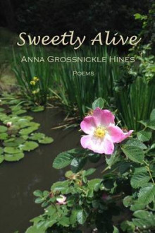 Sweetly Alive av Anna Grossnickle Hines (Heftet)
