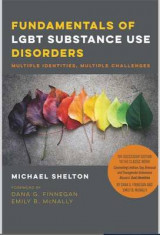Omslag - Fundamentals of LGBT Substance Use Disorders