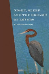 Night, Sleep and the Dreams of Lovers av David Brendan Hopes (Heftet)