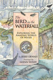The Bird in the Waterfall av Jerry Dennis (Heftet)