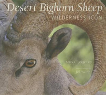 The Desert Bighorn Sheep av Mark C Jorgensen og Jeff Young (Heftet)