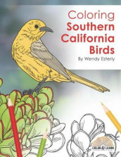 Coloring Southern California Birds av Wendy Esterly (Heftet)