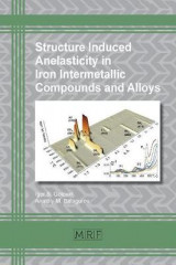 Omslag - Structure Induced Anelasticity in Iron Intermetallic Compounds and Alloys