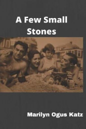 A Few Small Stones av Marilyn Ogus Katz (Heftet)