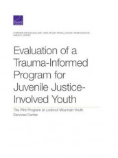 Evaluation of a Trauma-Informed Program for Juvenile Justice-Involved Youth av Stephanie Brooks Holliday, Priscillia Hunt og Jirka Taylor (Heftet)