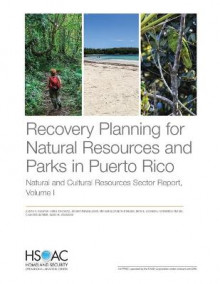 Recovery Planning for Natural Resources and Parks in Puerto Rico av Susan A Resetar, Abbie Tingstad og Joshua Mendelsohn (Heftet)