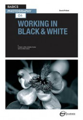 Working in Black & White av David Prakel (Heftet)