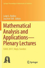 Omslag - Mathematical Analysis and Applications-Plenary Lectures