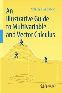An Illustrative Guide to Multivariable and Vector Calculus av Stanley J. Miklavcic (Heftet)